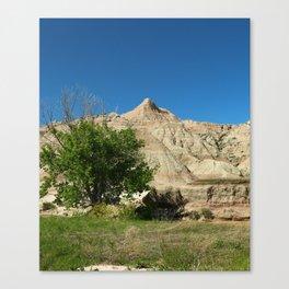 Rugged Landscape Tree Canvas Print