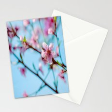 Pink on Blue Stationery Cards
