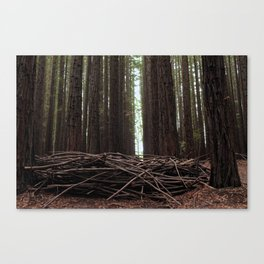 All I See Canvas Print