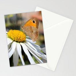 Farfalla su margherita Stationery Cards