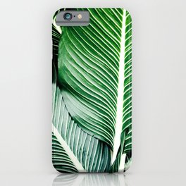 Palm-Tree Breeze iPhone Case