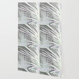 Dragon Tree Wallpaper