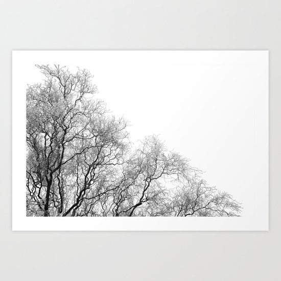A tree and his crown in winter I Art Print