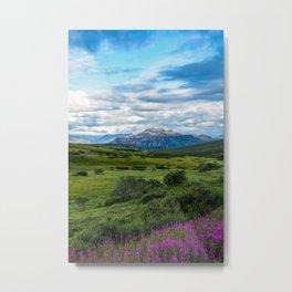 Alaskan Adventures  Metal Print