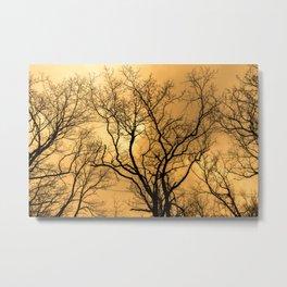 Orange sky, naked trees, haunting forest Metal Print