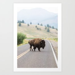 Yellowstone National Park Bison Print Art Print