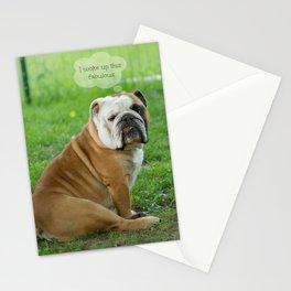 Fabulous Stationery Cards
