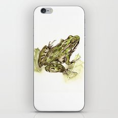 Northern Leopard Frog iPhone & iPod Skin