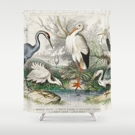 Common Crane White Stork Gigantic Crane Common Heron and Little Egret from A history of the earth an Shower Curtain
