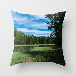 A Maine Marshland Throw Pillow