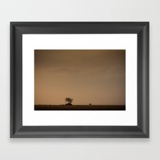 Lone wildebeest grazing in South Africa at sunset Framed Art Print