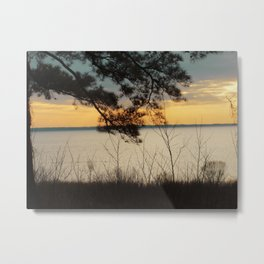 Lake Maury, Newport News, VA Metal Print