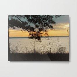 Lake Maury, Newport News, VA Metal Print