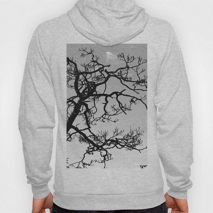 Tree Silhouette Hoody