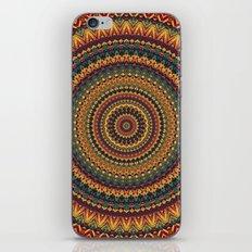 MANDALA DCXXIX iPhone & iPod Skin