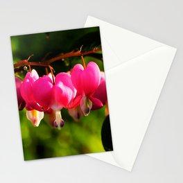 Pink Bleeding Hearts After an Evening Sun Shower Stationery Cards
