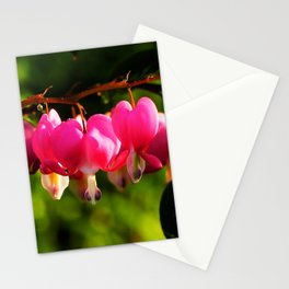Pink Bleeding Hearts After an Evening Sun Shower Stationery Cards