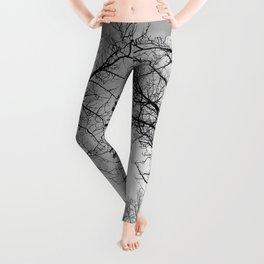 Black and White Canopy Leggings