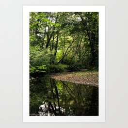 Green Creek Art Print