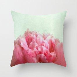 skykissed Throw Pillow