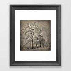 Guards of the bay Framed Art Print