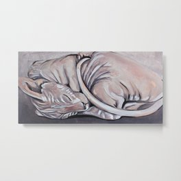 Sphynx, sphinx, sleeping little cat, original oil painting, art Metal Print