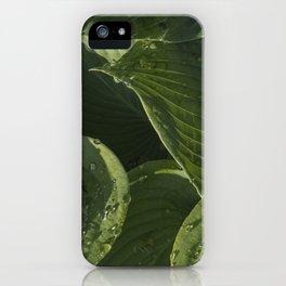 Hosta After a Rain iPhone Case