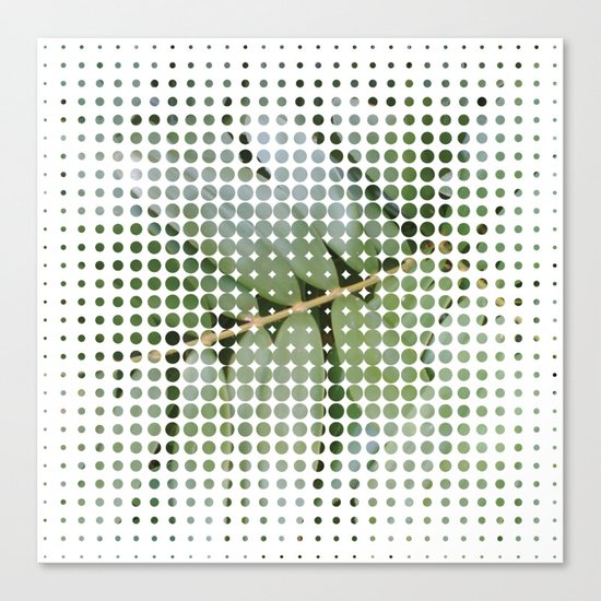 mesh white Canvas Print