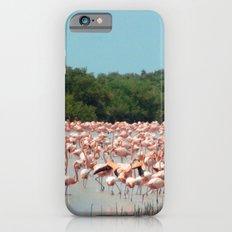 Flamingo Landing Slim Case iPhone 6s