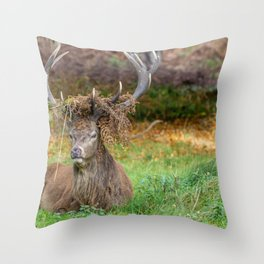 Crowned. Throw Pillow