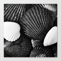 shells Canvas Prints featuring Shells by SilverSatellite