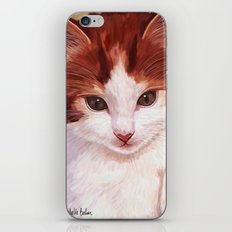 Copper kitten iPhone & iPod Skin