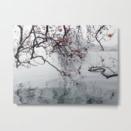Plane Tree Branches Hanging Over Lake Metal Print