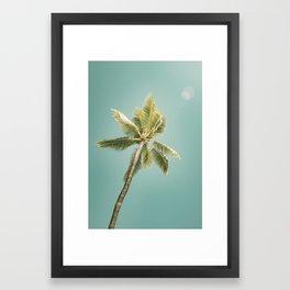 palm tree ver.summer 02 Framed Art Print