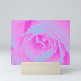 Perfect Hot Pink and Light Blue Rose Detail Mini Art Print