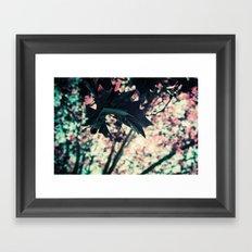 Spring in Purple Chrome, St Kilda Framed Art Print