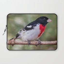 Rose-breasted Grosbeak Laptop Sleeve