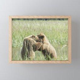 Brown Bear Cubs - Wrestling Match Framed Mini Art Print