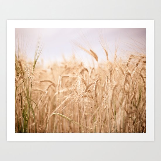 Golden Summer Art Print