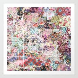 Boise map Art Print