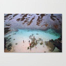indonesian ocean Canvas Print