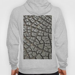 Texture #14 Drought Hoody