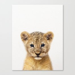 Baby Lion, Baby Animals Art Print By Synplus Canvas Print