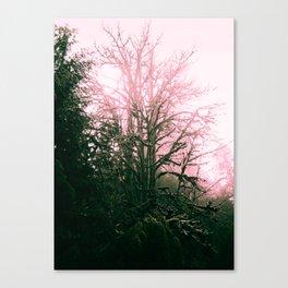 The Tree Spirit #1 Canvas Print