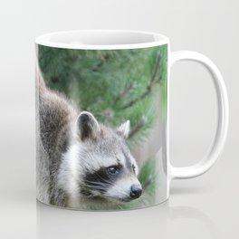 Raccoon_001_by_JAMFoto Coffee Mug