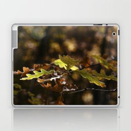 Oak leaves in forest with yellow colors in Autumn Laptop & iPad Skin