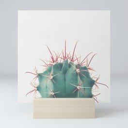Ferocactus Mini Art Print