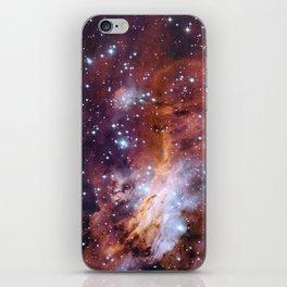 Prawn Nebula iPhone Skin