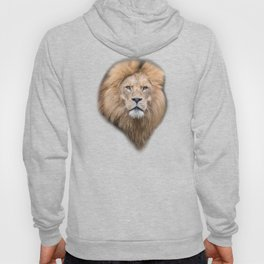 Closeup Portrait of a Male Lion Hoody