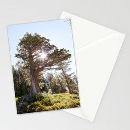 Lopsided Sierra Juniper Tree (Lake Tahoe, California) Stationery Cards